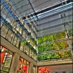 urban verticalgarden nature