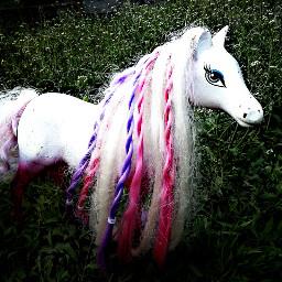 pony beautiful girl white spring