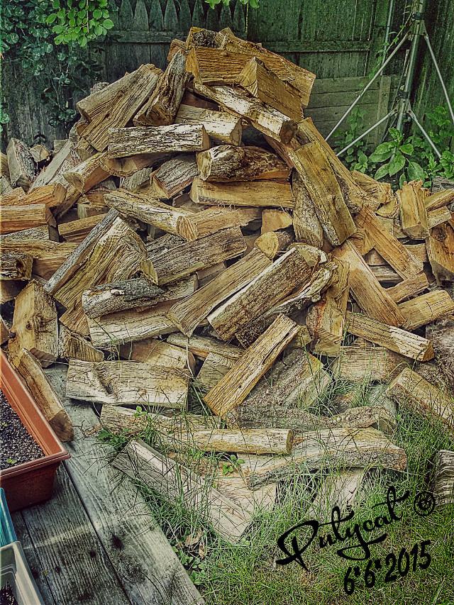 #firewood #randomshot #PicsArt #photography #woodpile #hdr