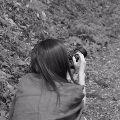#japan,#nature,#photography,#swan,#bird,#freetoedit