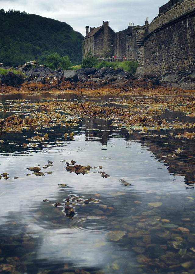 #old #house #castle #clear #water #photography  #nature
