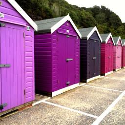 beachuts colours purples