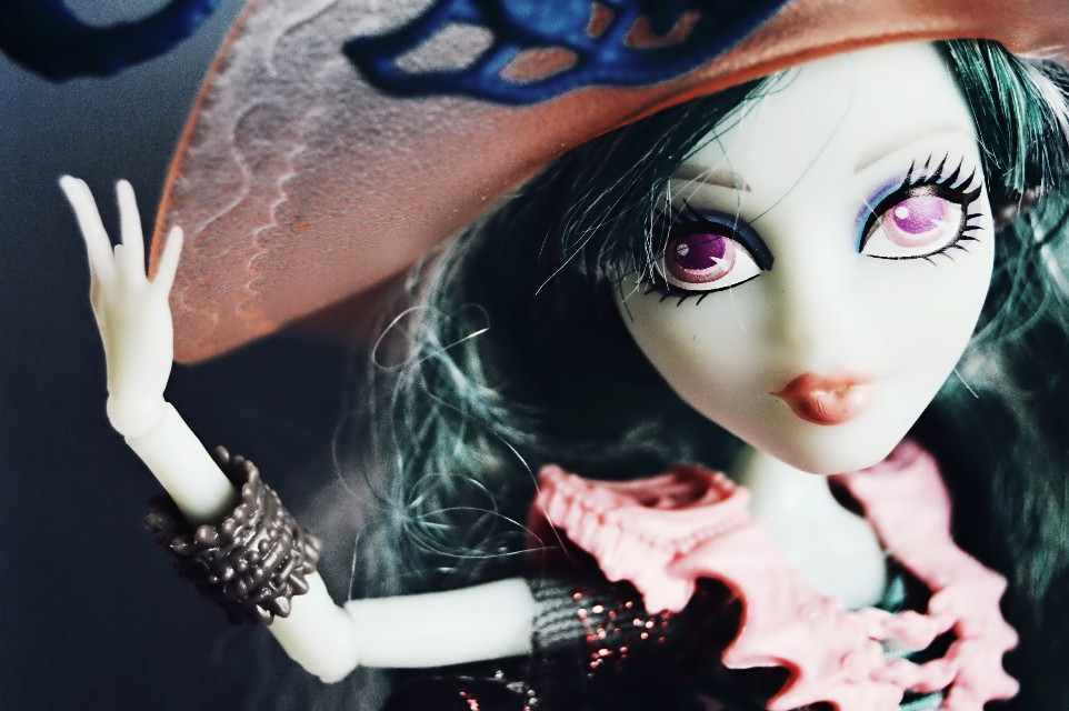 ~ Vandala Doubloons ~ on board… for my dear friend @lion24 // @lion24mh   #photography #doll #monsterhigh
