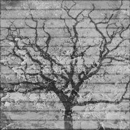 blackandwhite shapemark drawing freetoedit tree