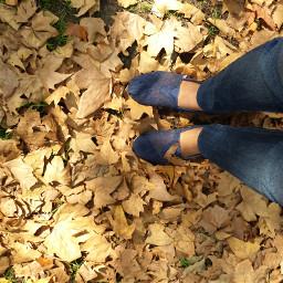 shoefie autumn