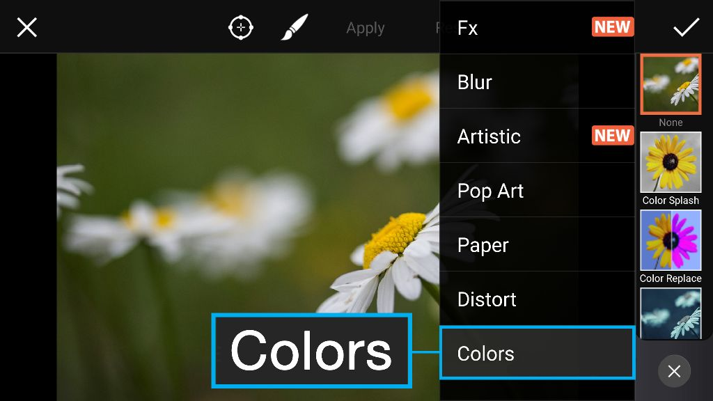 How to Use Color Splash