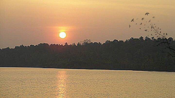#sun set #nature #sky #colourful #colourfulsky