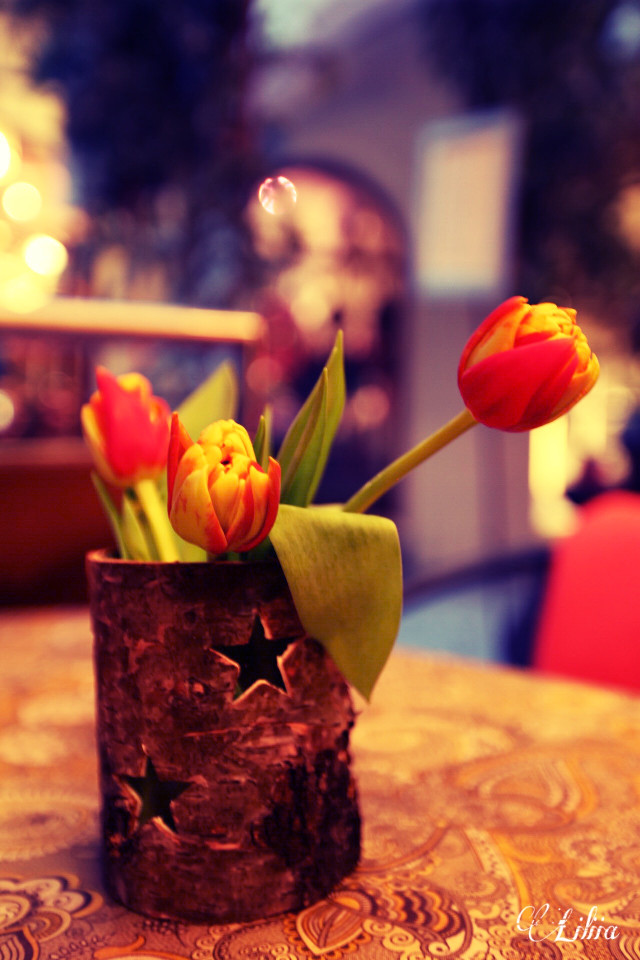 #freetoedit  #flowers  #colorful