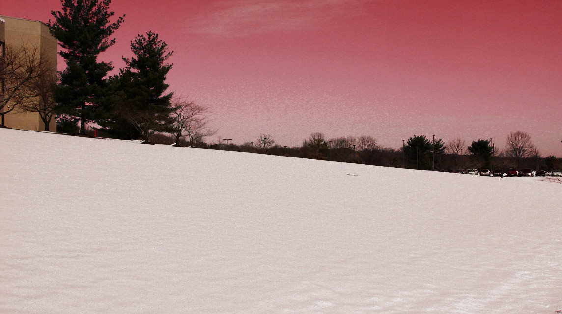 Pink sky! #pink #snow #trees #white  #nature #photography  #edit