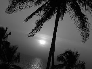 blackandwhite beach edit photography interesting