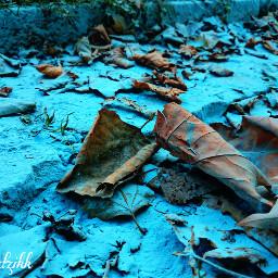 blue colorful hdr colorsplash nature