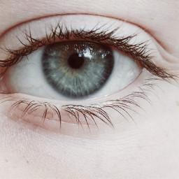 eye eyelash blueeye pho photograph