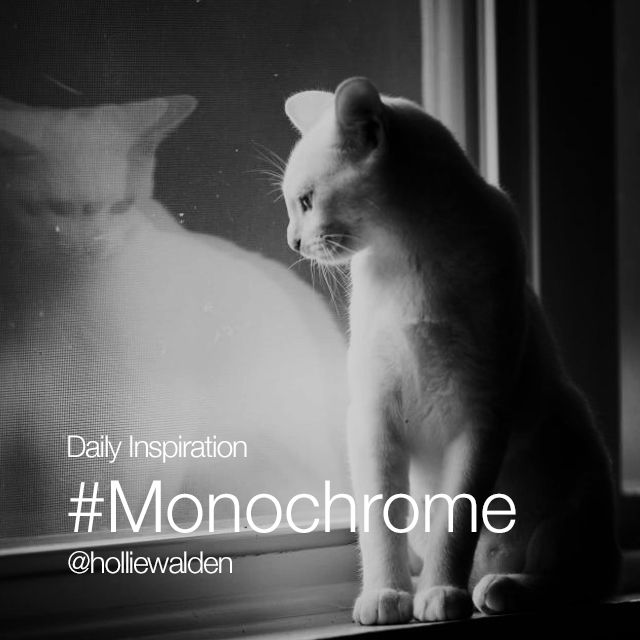 Monochrome photography