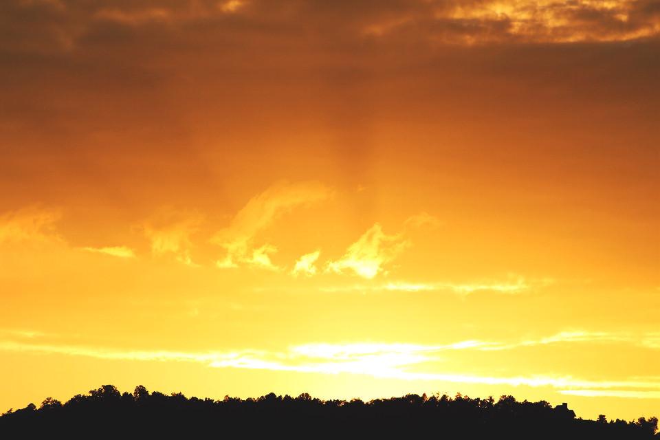 Golden Sunset  #sun #sunset #clouds #sky #skyscape #golden #goldenhour